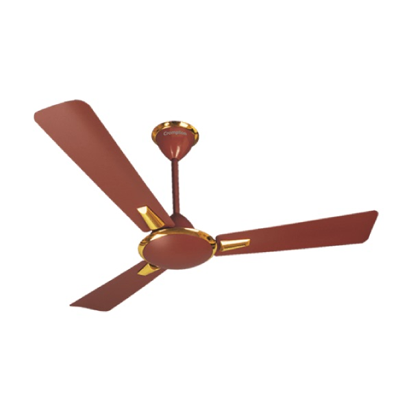 Crompton_aura_brown_fan
